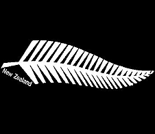 Fern with 'New Zealand' text White Car Sticker