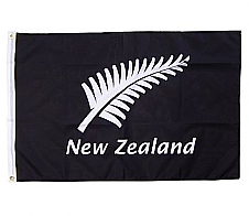 Flag Silver Fern and New Zealand 90x60cm