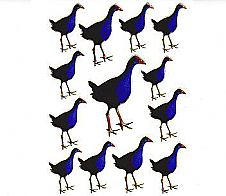 Laser Stickers Pukeko